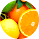 Citrus, Agrestic, Fresh, Herbaceous